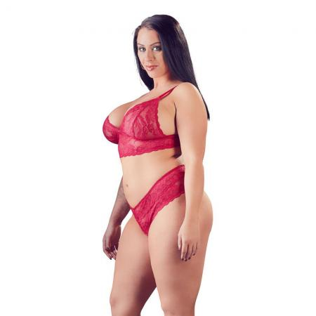 Cottelli Plus Size Red Lace Bra And Briefs